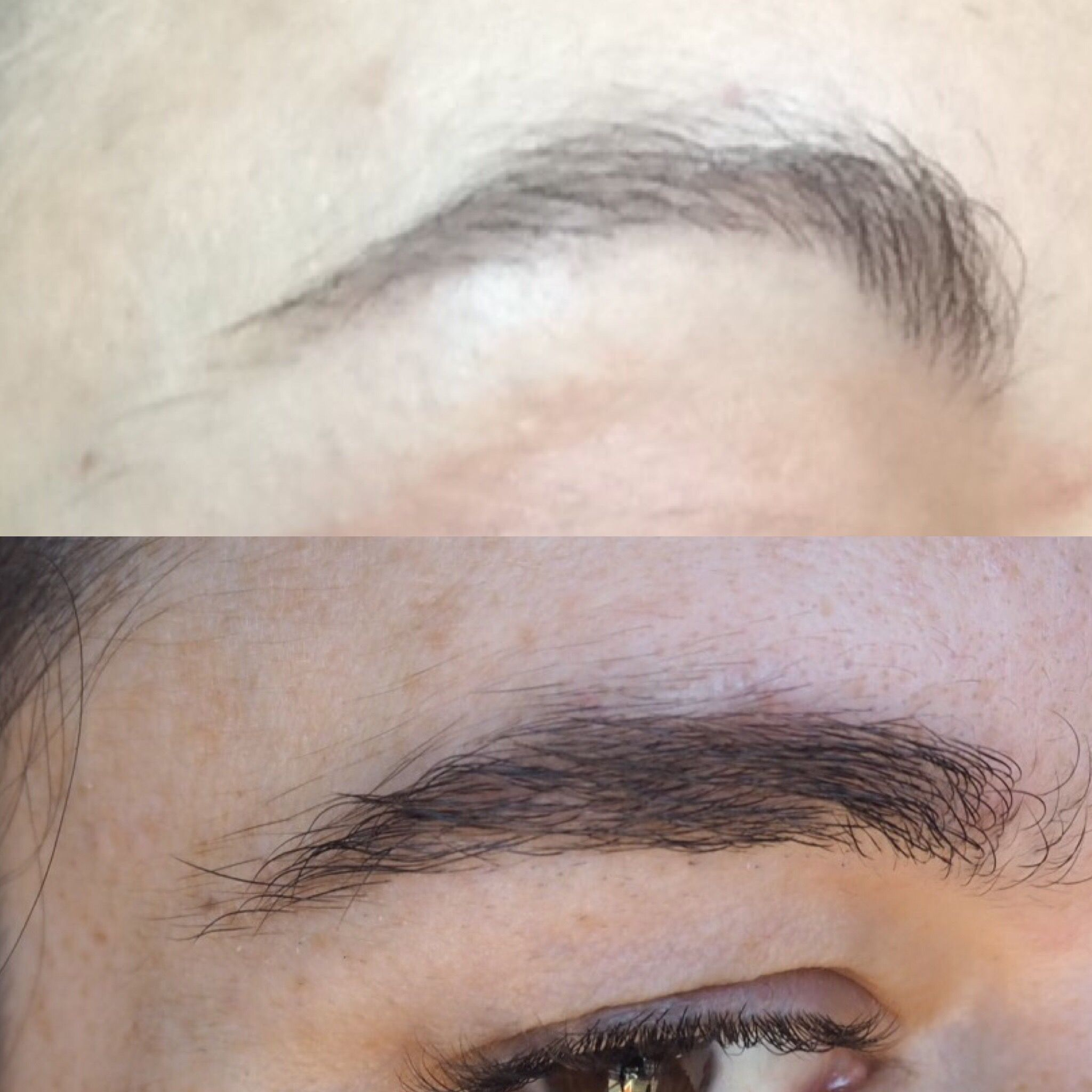 How To Grow Back Sparse Overplucked Brows Before And After Pictures