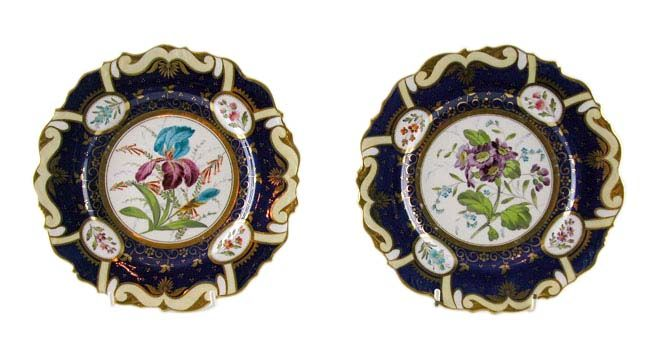 A pair of Spode cabinet plates