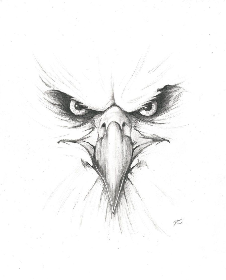 Eagle head tattoo eagle tattoos head tattoos face drawings tattoo drawings