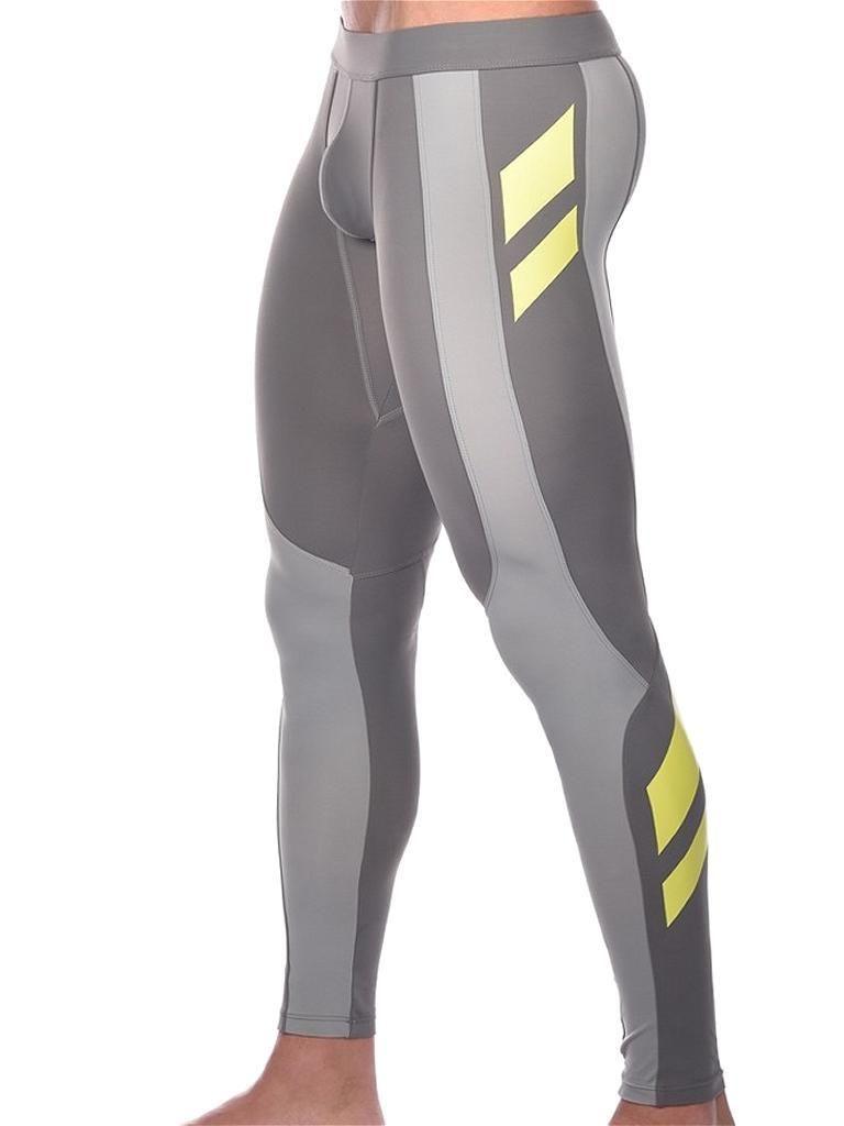 03a9510f0 AlphaMaleUndies - 2Eros Pro Aktiv Compression Tights Leggings Titanium