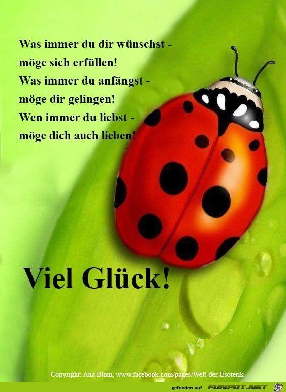 Viel Gl ck | Viel Glück | Birthday wishes, Birthday Quotes und