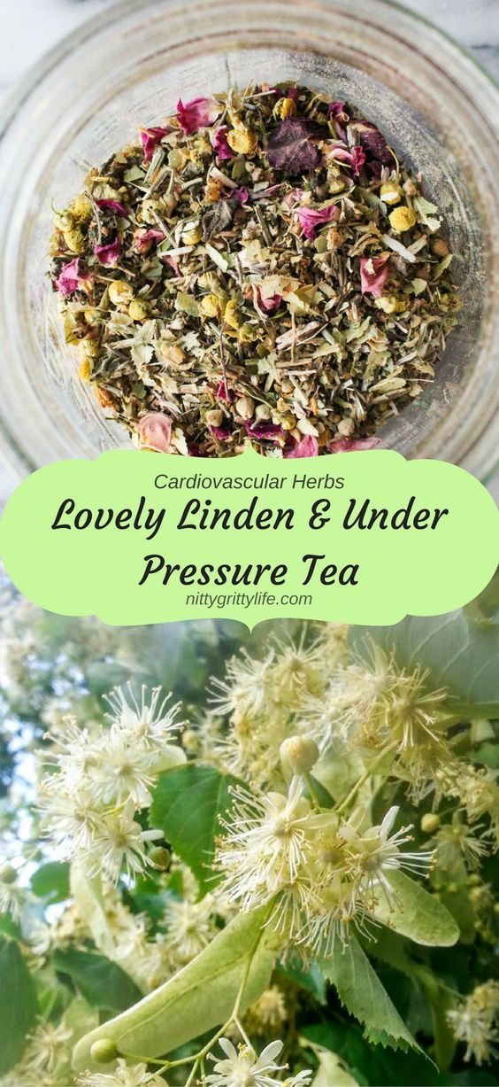 Lovely Linden & Under Pressure Tea
