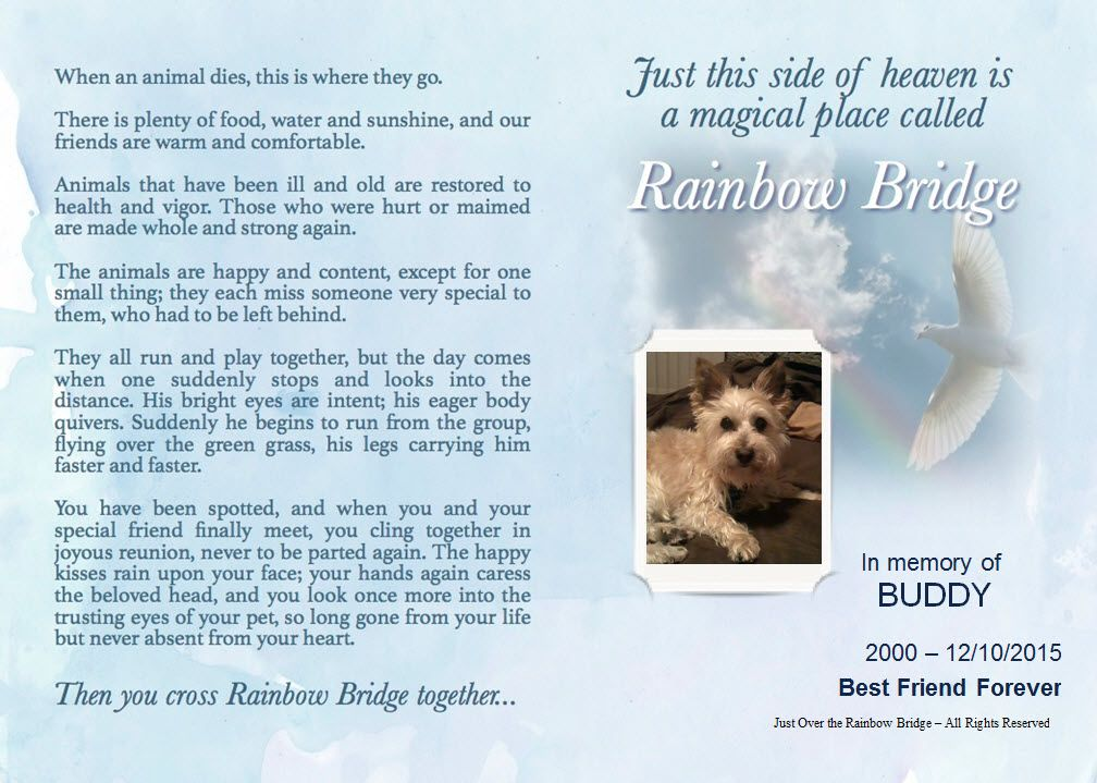 Personalised Rainbow Bridge Pet Loss Poems For Dogs And Cats Rainbow Bridge Rainbow Bridge Poem Pet Loss Poem