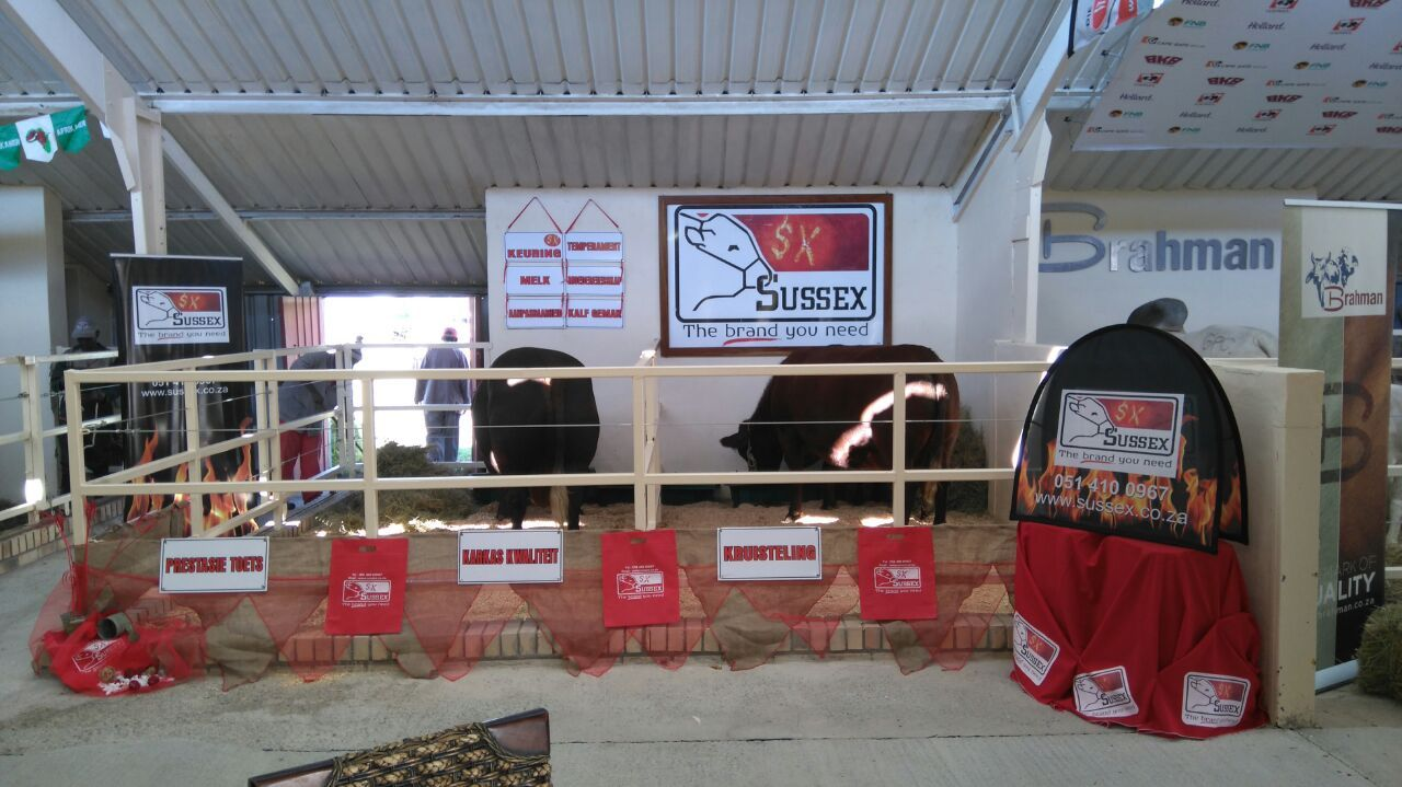 Sussex at Nampo 2016
