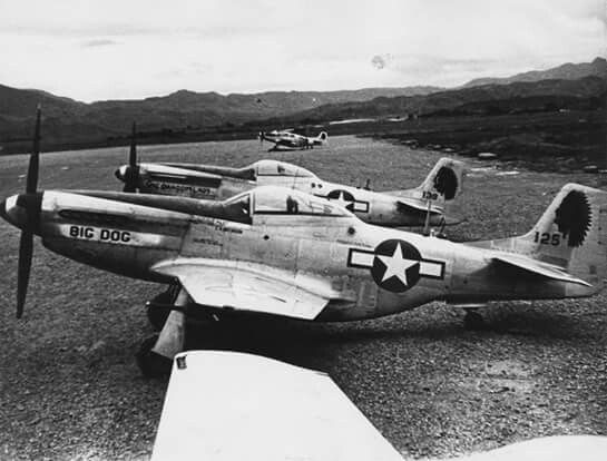 Mustangs in China, 1945