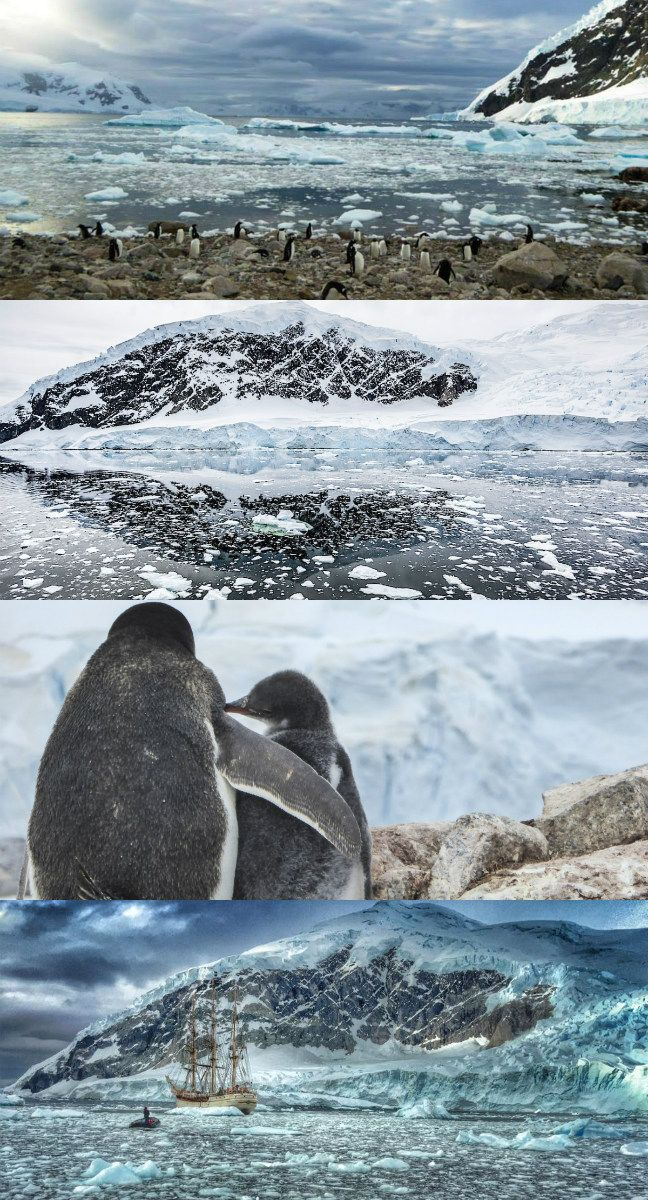 15 Photos that Will Make You Wish You Were in Antarctica Now