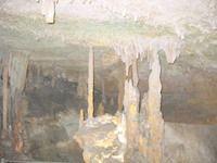 AL Rickwood cave stalagmite  124 2419