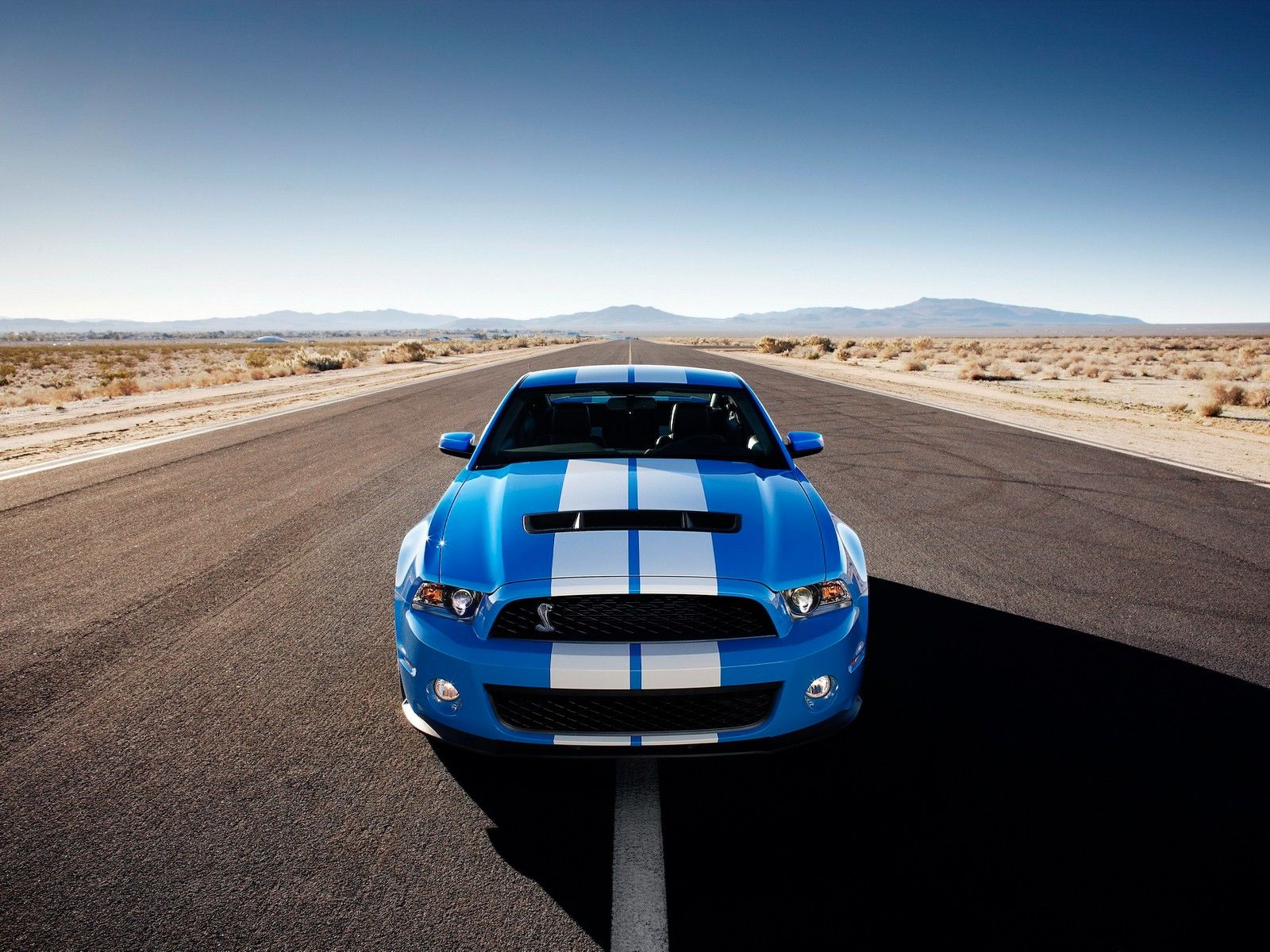 Cars Desert Muscle Cars Roads Vehicles Ford Mustang Ford Mustang Shelby Gt500kr Front View Ford Mustang Shelby Mustang Shelby Ford Mustang Shelby Gt500