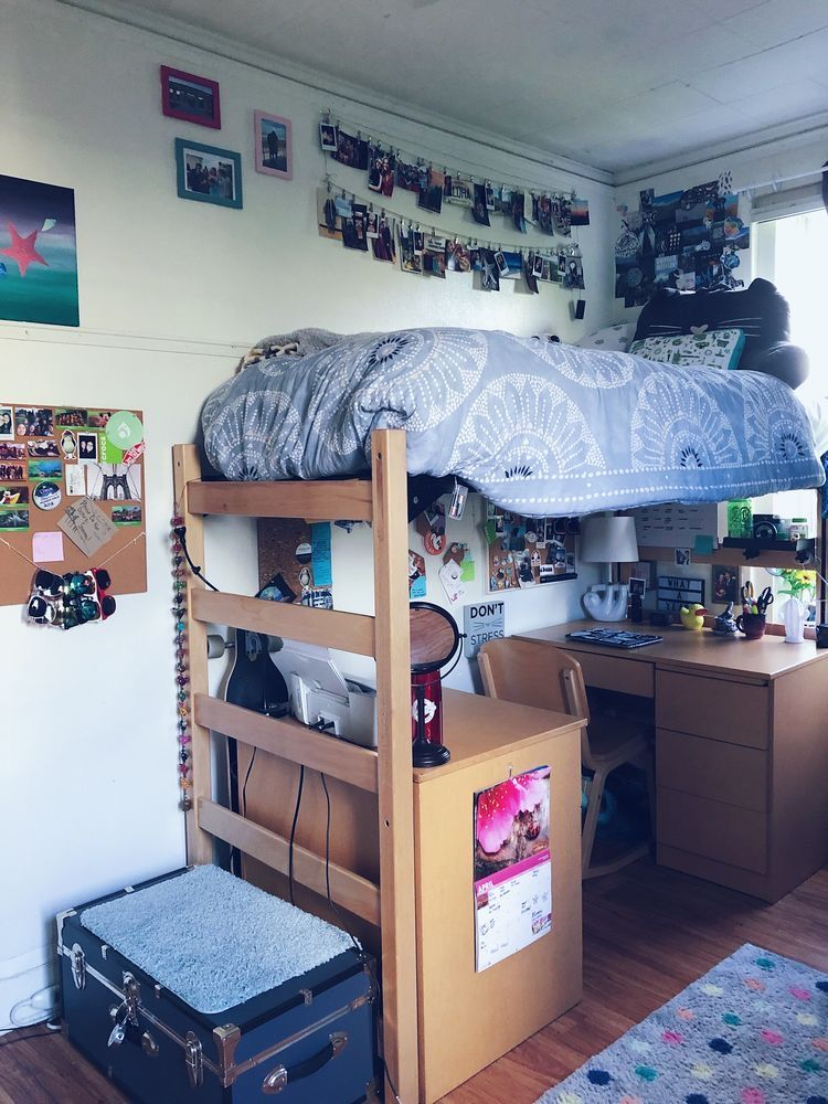 Cool College Dorm Rooms: TapestryGirls.com In 2020 (With Images)