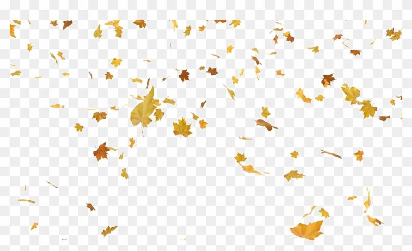 Find Hd Falling Autumn Leaves Png Transparent Png Is Free Png Image Download And Use It For Your Non Commercial Pr Fall Leaves Png Autumn Leaves Leaf Stencil
