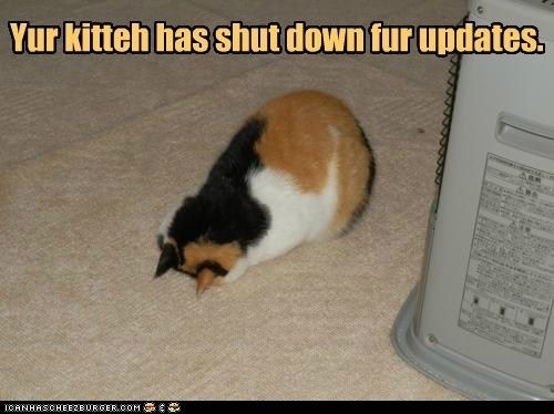 Shut down fur updates
