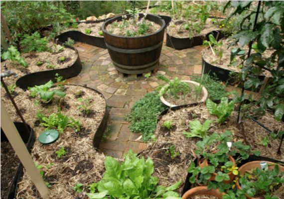 Open townhouse garden small space urban food production for Small permaculture garden designs