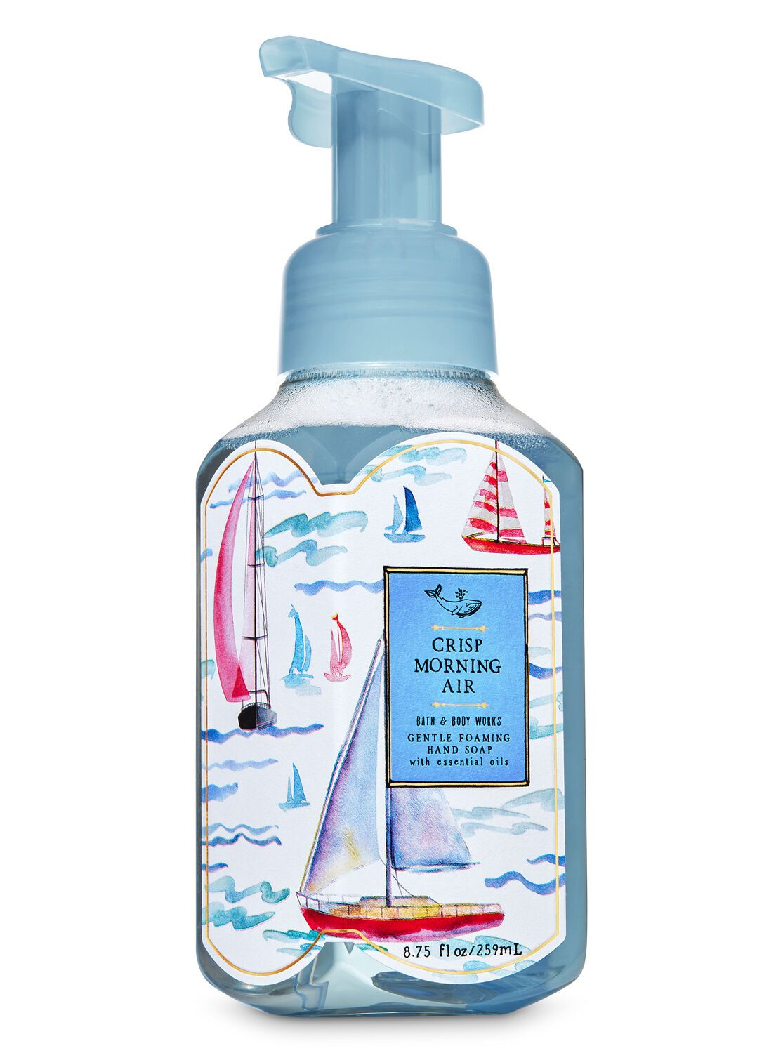 Bath Body Works Crisp Morning Air Gentle Foaming Hand Soap In