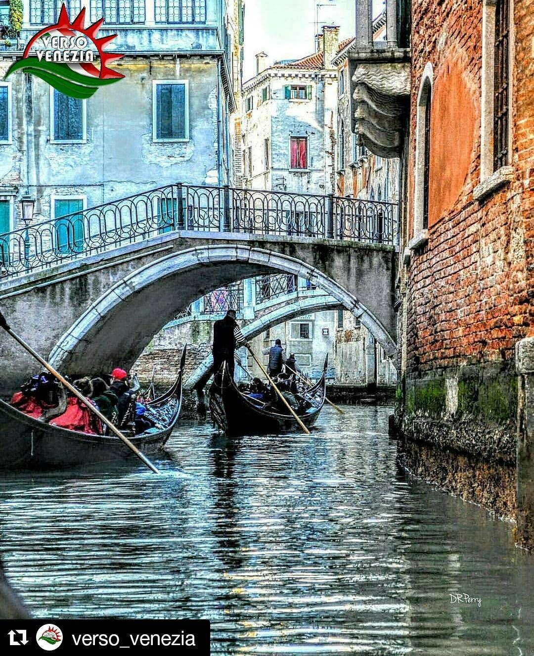 #Repost @verso_venezia with @repostapp  F O T O  D I @david_r_perry              CITTÁ  Venezia NAZIONE  Italia SCELTA DA ADM  @vincenzo_pagliara   HASHTAG  #verso_venezia  GRUPPO  @verso_community  ALTRI HASHTAG -  #venezia #venice #piazzasanmarco #veneto  #vivoveneto #igersvenezia #gondola #bridge #volgovenezia #veneziaunica #veneziadavivere #veneziagram #bestpic #bestoftheday #bestphoto #myvenice #visitveneto #visititalia #igersveneto #igersvenezia #volgoveneto #italy #loves_veneto…