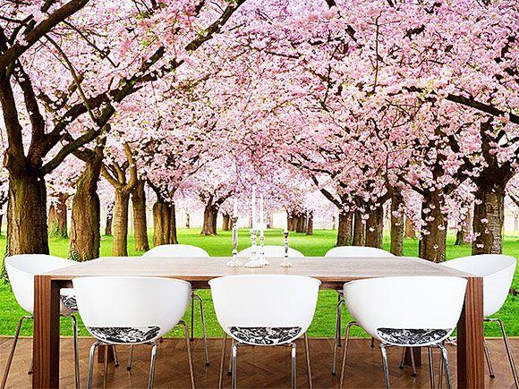 Sakura Cherry Blossom Wall Murals Best 55 Wall Murals Ideas For Your