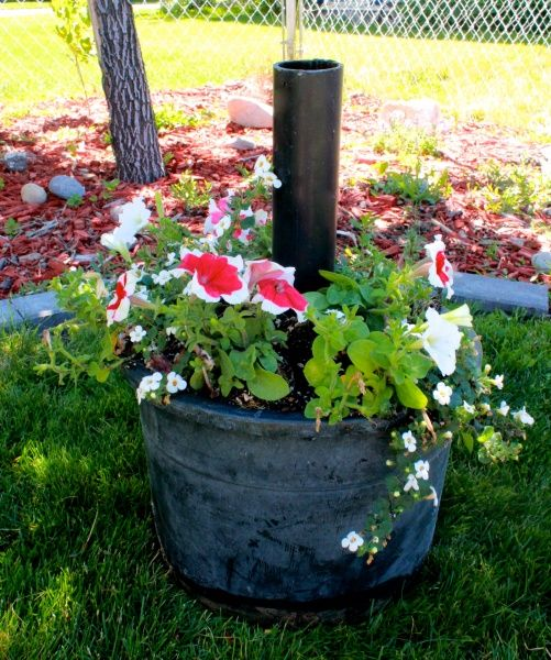 Learn to make a DIY Umbrella Stand and Planter that will stand up to