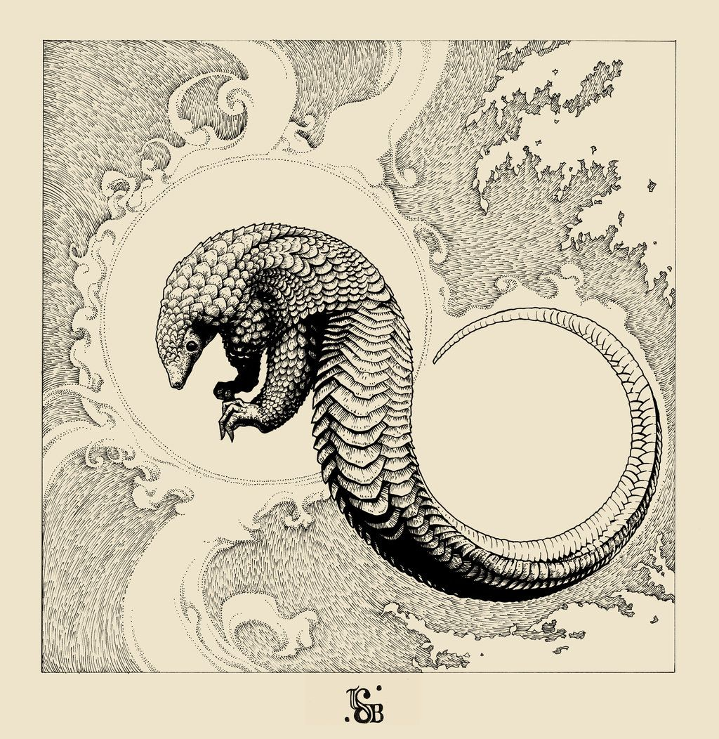 The Pangolin by thesecondbus on deviantART | Art for my walls ...