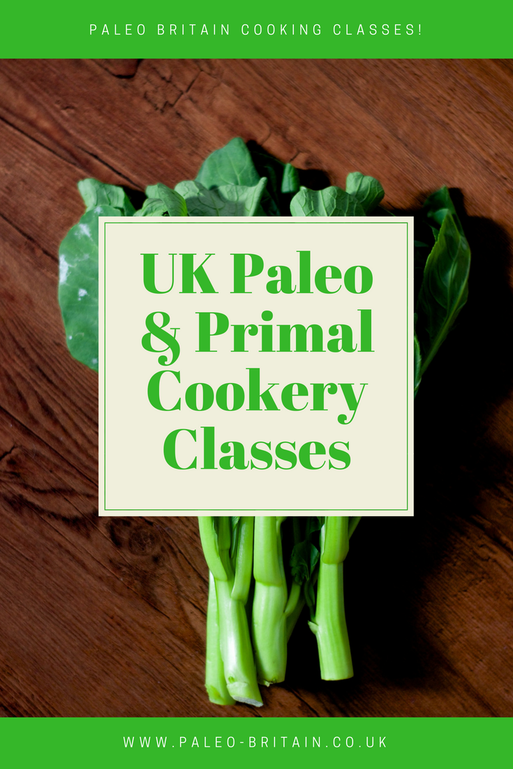 Financial Literacy Essay Paleo Chicken Recipes Slow Cooker  Paleo Chicken Casserole  Paleo Recipes   Healthy Eating Habits Essays On Friends also Essay On Iraq War Paleo Chicken Recipes Slow Cooker  Paleo Chicken Casserole  Paleo  Swimming Essays