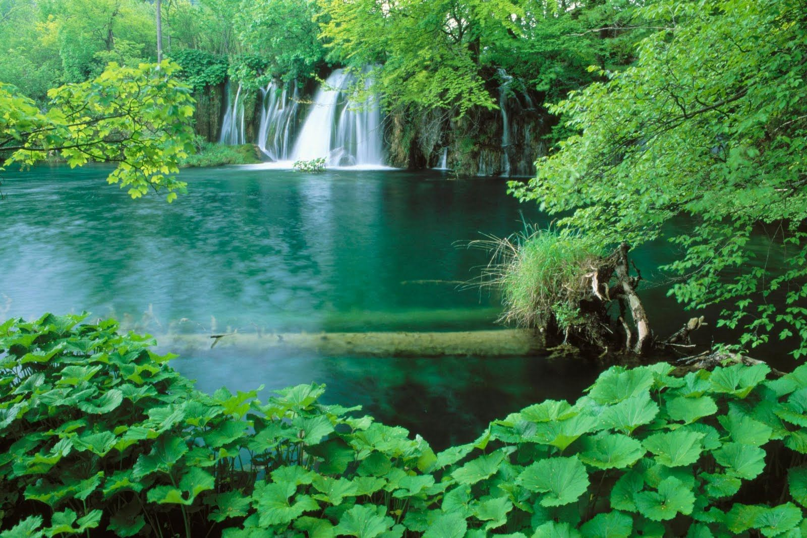 Supernatural Wallpapers Super Natural Cool Wallpapers Most Beautiful Nature Part 8 Beautiful Nature Scenes Beautiful Nature Wallpaper Nature Scenes