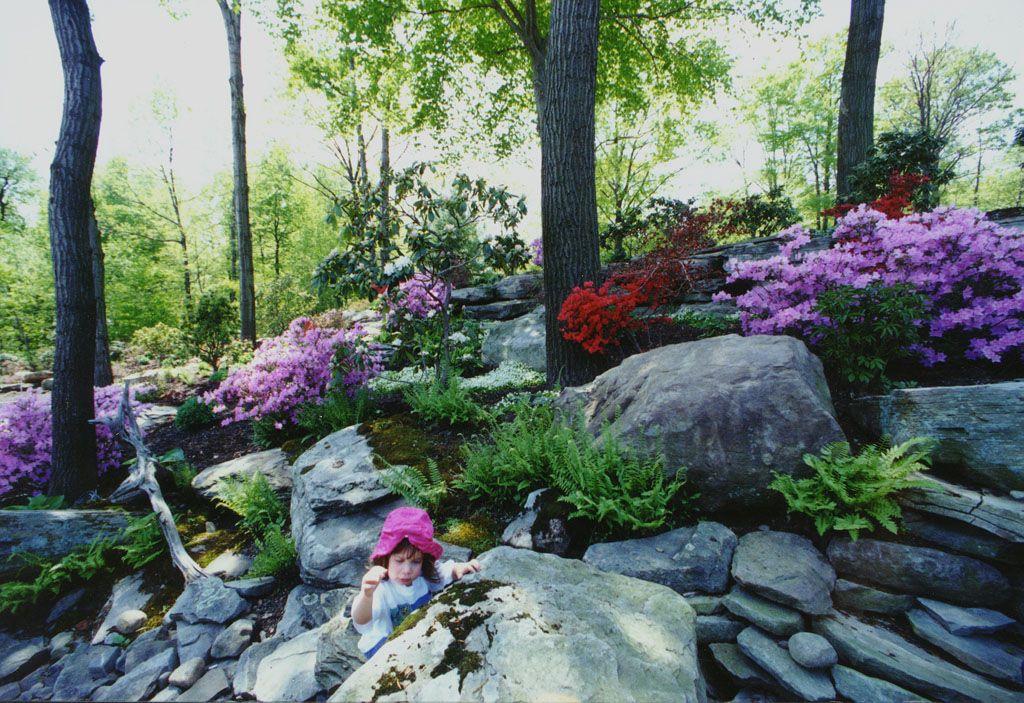 Natural Rock Garden Landscape In Bergen County, Nj: This Natural