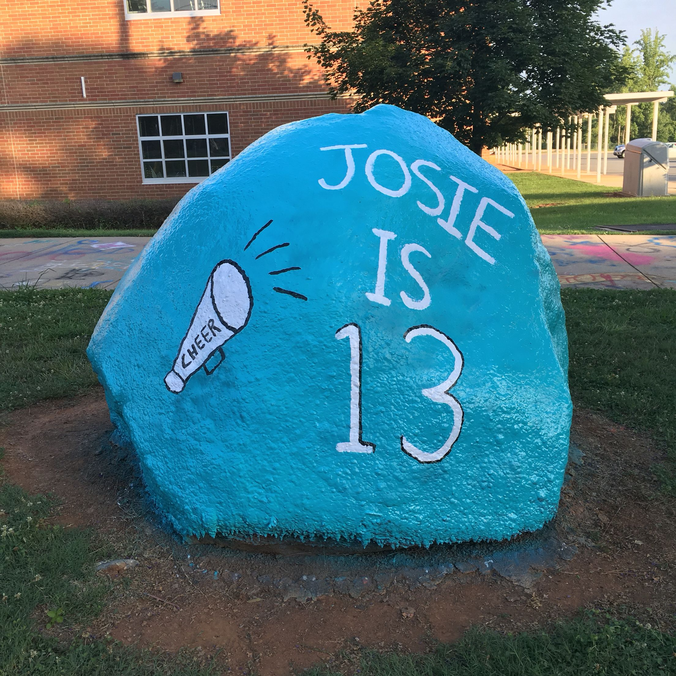 What you need to paint a spirit rock: - 1 can of spray paint for ...
