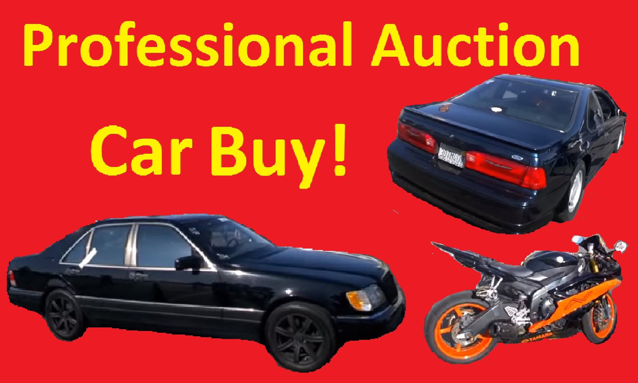 How To Buy Cars At Auction >> Professional Car Auction Buy Exposed Auto Auctions How