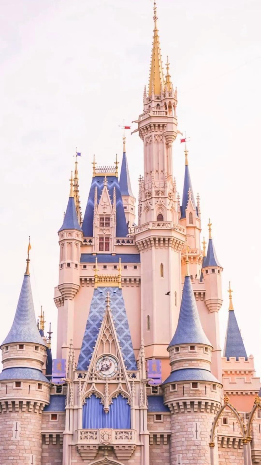 Cinderella castle! ✨💕