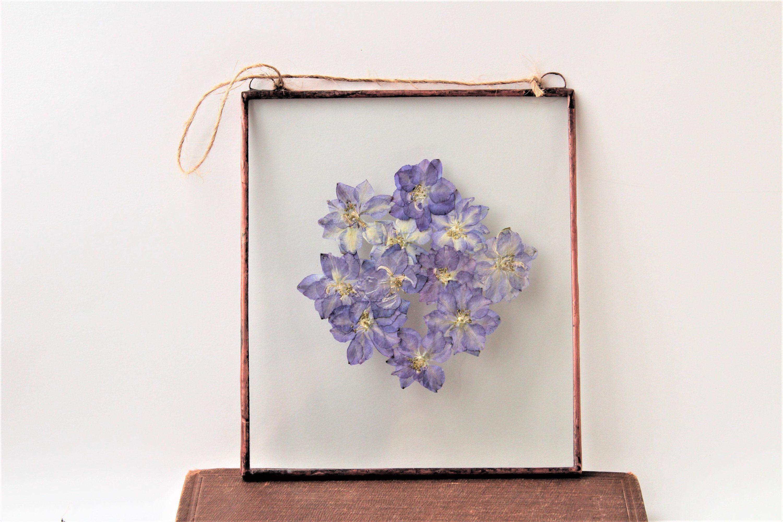 Framed Pressed Flowers Decor Dry Flower Wall Decor Pressed Blue Flowers Frame Herbarium Wall Hanging Dry Wild Fl Flower Wall Decor Flower Wall Flower Frame