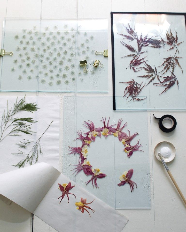 A modern way to display pressed flowers naturmaterialien for Dekoration und display
