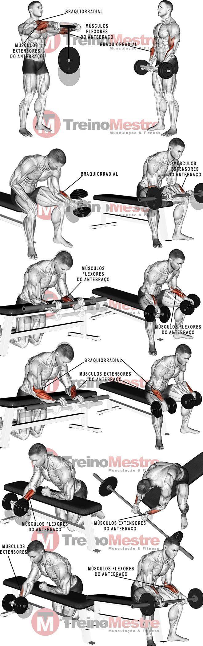 Unterarm: Muskeln, 7 Übungen und Tipps für stärkere Unterarme - Yoga & Fitness #dumbbellworkout