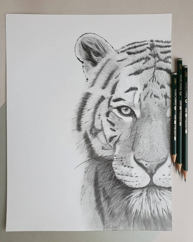 Drawing Ideas Pencil ; Drawing Ideas
