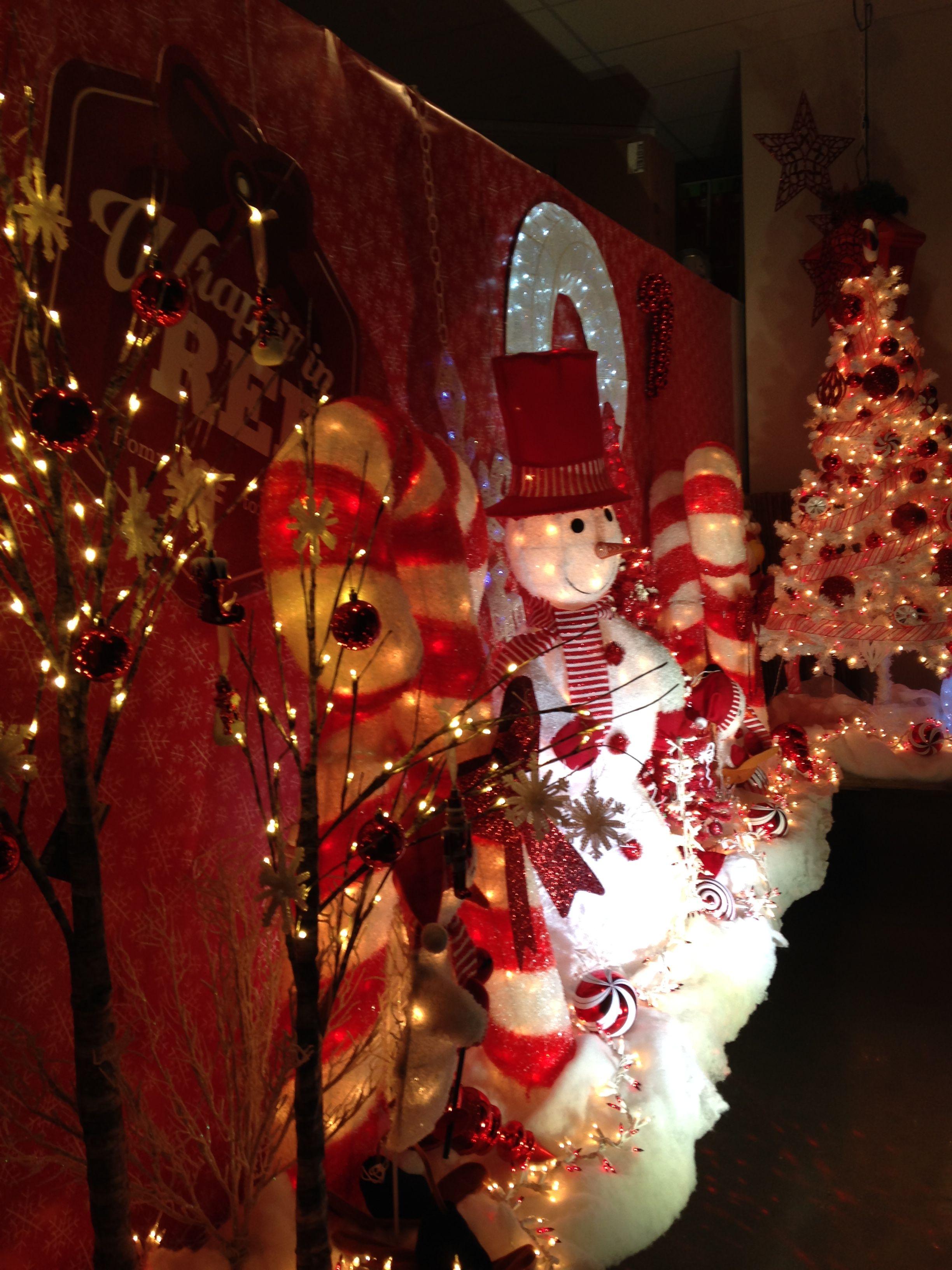 My Ace Hardware Window Display Outdoor Christmas Decorations Christmas Display Outdoor Christmas