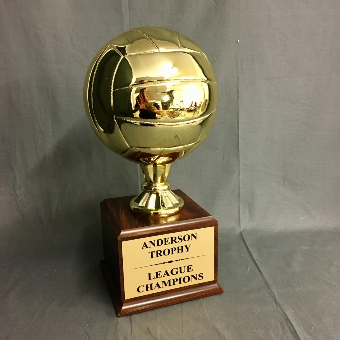 Gold Champions Volleyball Trophy On Woodgrain Finish Base Los Angeles Custom Awards Trophies Trophy Volleyball Custom Awards