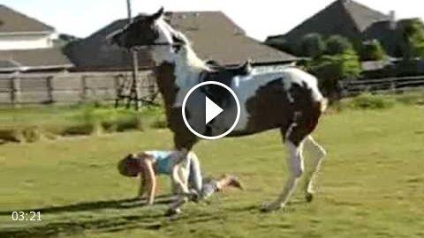 Bad Horse Falls!