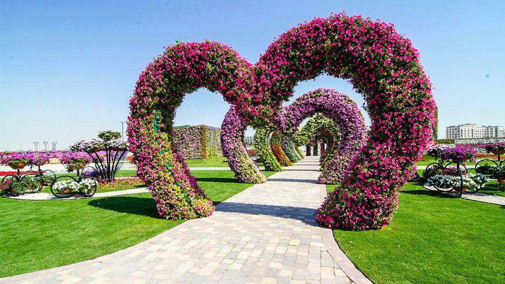 Dubai Miracle Garden - Most Beautiful Garden In The World - Always