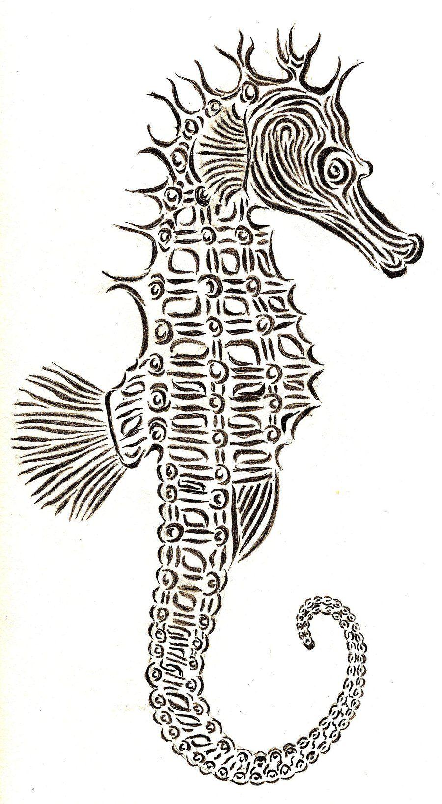 draw seahorse drawing