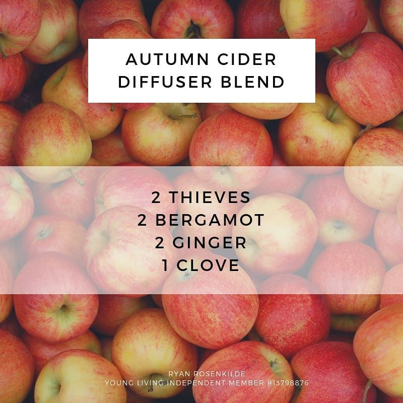 Autumn Cider Diffuser Blend  #winterdiffuserblends