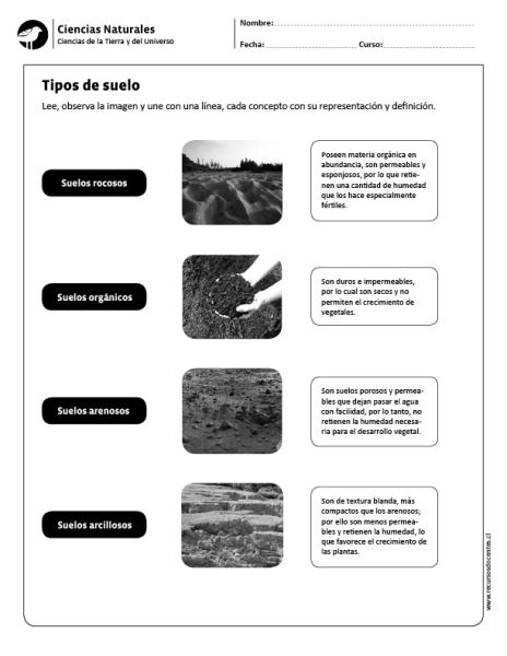 Tipos De Suelo Ciencias De La Tierra Tipos De Suelo Ciencias Naturales