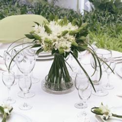 Star of Bethlehem Wedding Flower Box - 3 Bridal