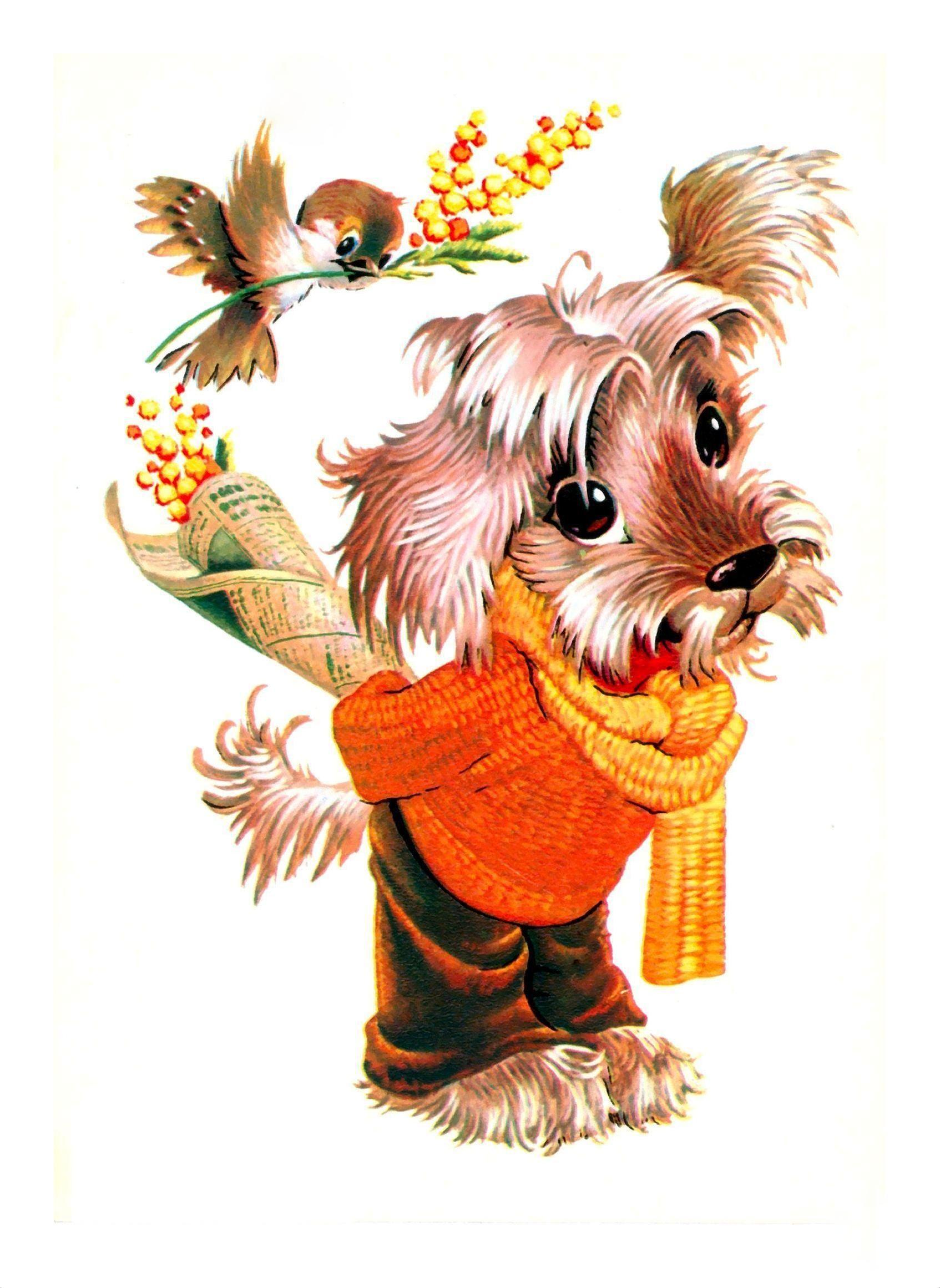 Как, открытки с собаками ссср