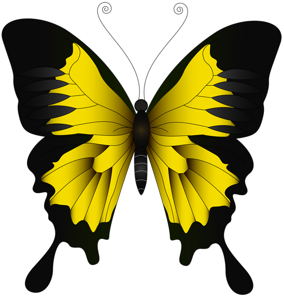 Aesthetic Blue Butterfly Png