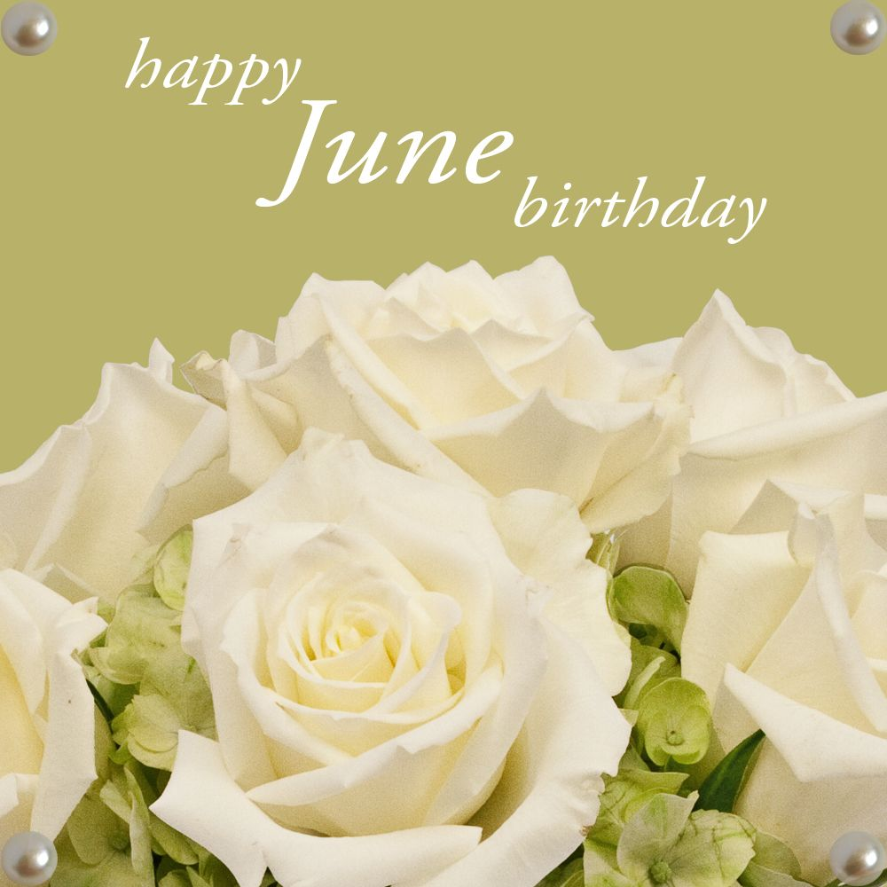Happy June Birthday From Freytags Florist Birthflower Rose