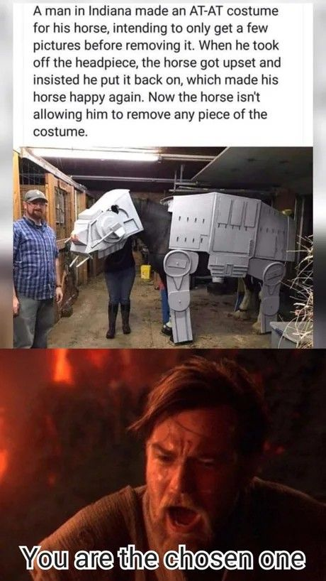 9gag Go Fun The World Funny Star Wars Memes Yoda Funny Yoda Meme