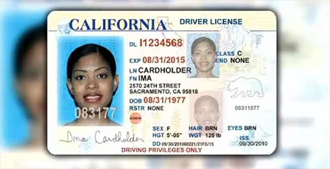California Fake Id Real Driver S License Registered Driver