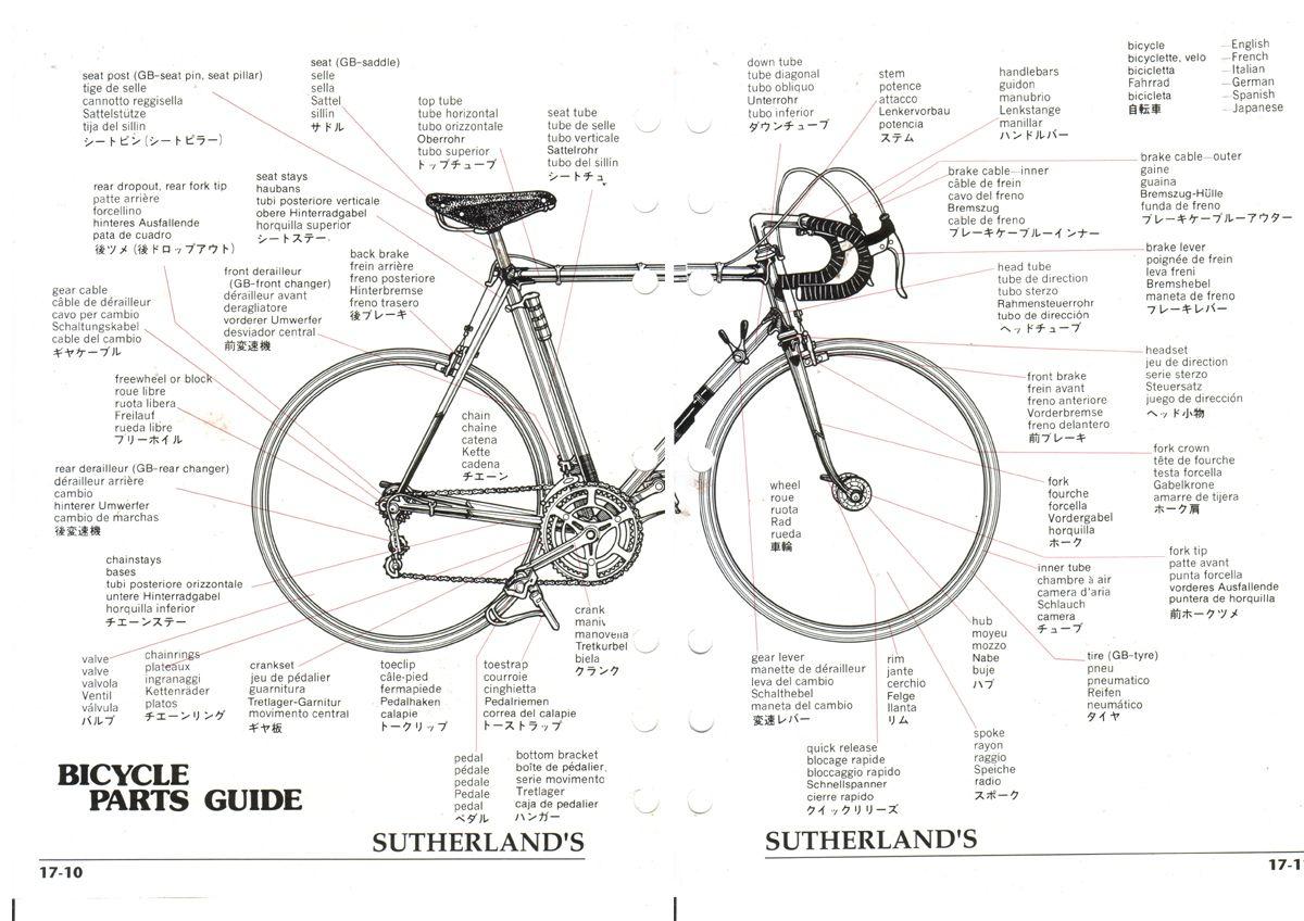 Image Result For Bike Diagram In Different Languages Bike Bike