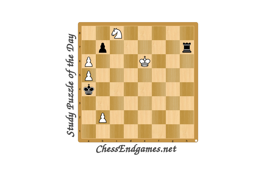 Study Puzzle of the Day 27/07/2020 * Chess Endgames
