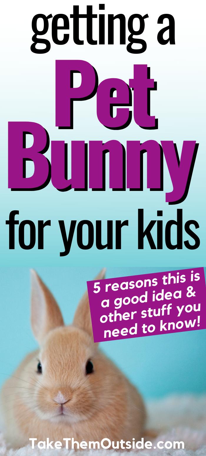 Pin On Raising Outdoor Kids