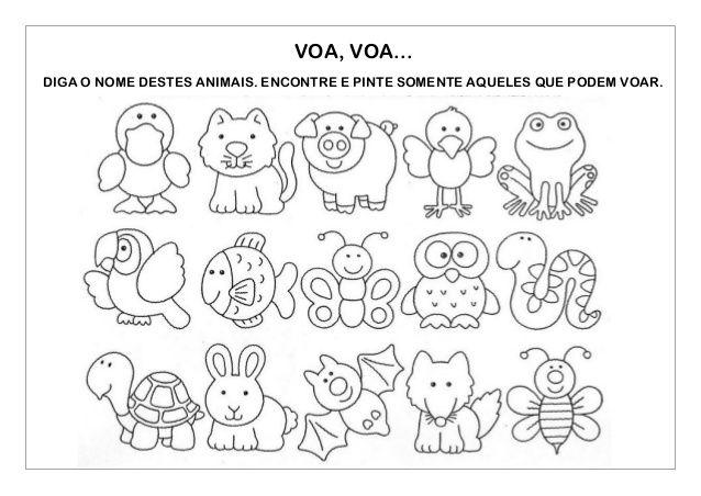 Animais Para Colorir Desenho De Papagaio Desenhando Esbocos E