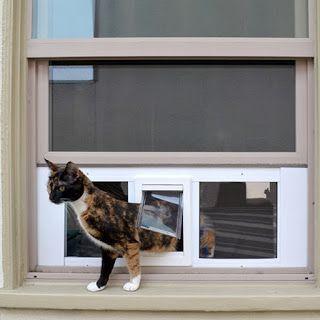 Best Window Mounted Cat Door Ideas Diy Cat Stuff