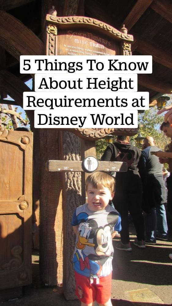 400+ 5 Things To Know About Height Requirements at Disney World